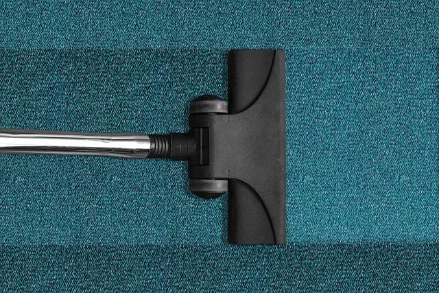 האם ניקוי שטיחים מקצועי יכול להאריך את אורך חיי השטיחים והספות?